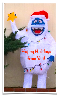 yeti_holidays